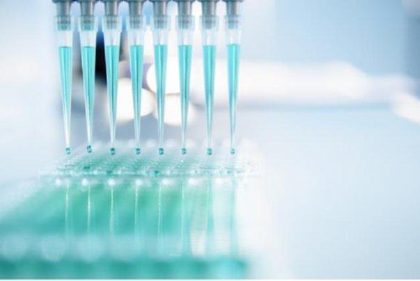 شناسایی 44تبعه خارجی مبتلا به مالاریا در شیراز