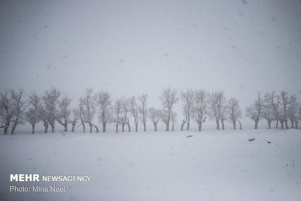 شروع بارش برف در ایلام، آماده باش اکیپ های برف روبی