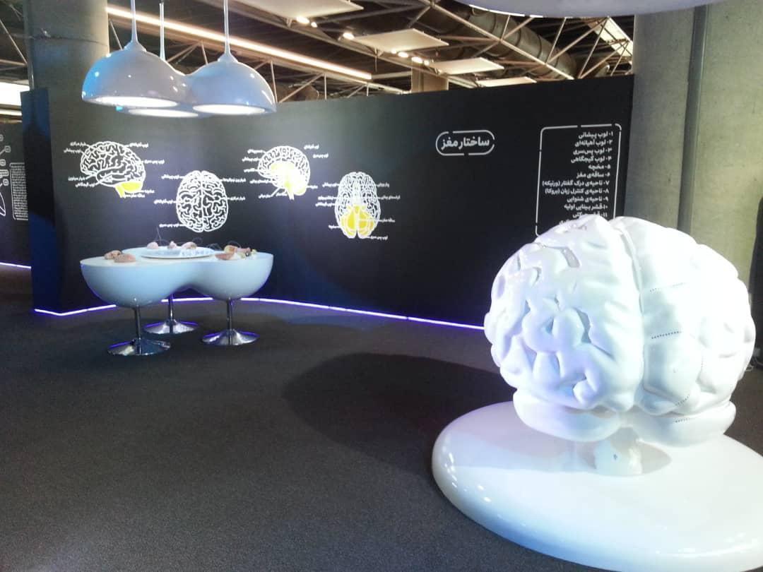 نخستین پردیس مغز وعلوم شناختی کشور راه اندازی شد