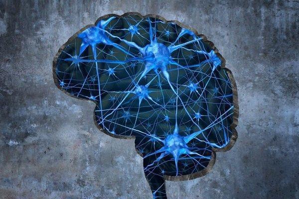 اپلیکیشن پیشگیری از آلزایمر سالمندان رونمایی می شود