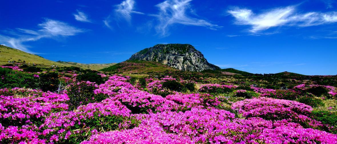 دیدنی ترین نقاط جهان برای سفر تابستانی