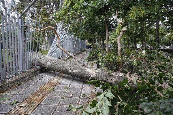 تعطیلی مدارس تنیان به خاطر تندباد، تخریب 110 واحد مسکونی و تجاری