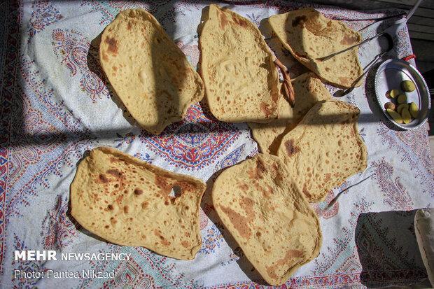 نان فرسودمند با باکتری های بومی فراوری شد