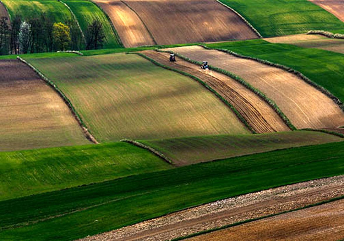 پرداخت بیش از 207 هزار میلیارد ریال تسهیلات کشت محصولات زراعی توسط بانک کشاورزی در سه سال اخیر