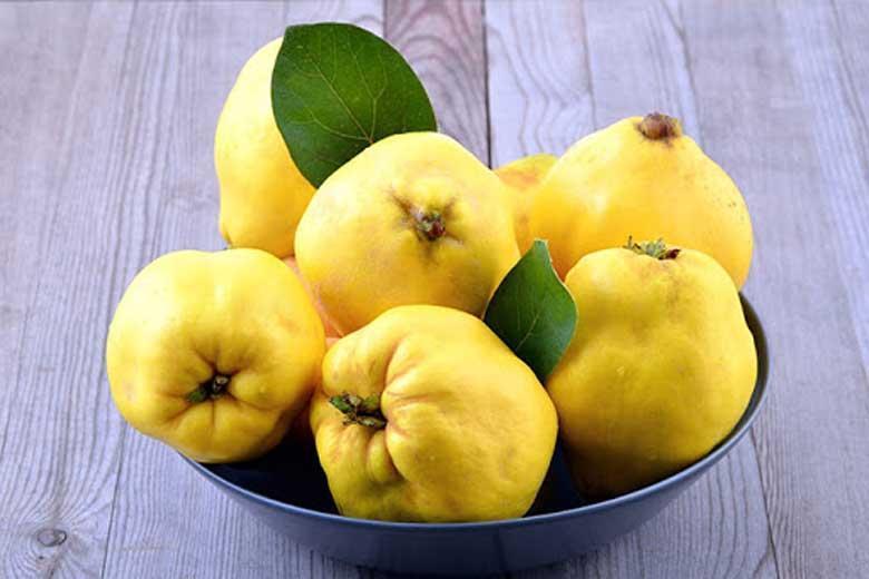 میوه ای که سیستم ایمنی تان را قوی می کند