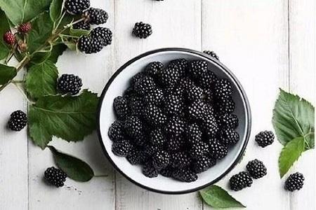 خوراکی های سیاه رنگ که باید در رژیم غذایی خود بگنجانیم