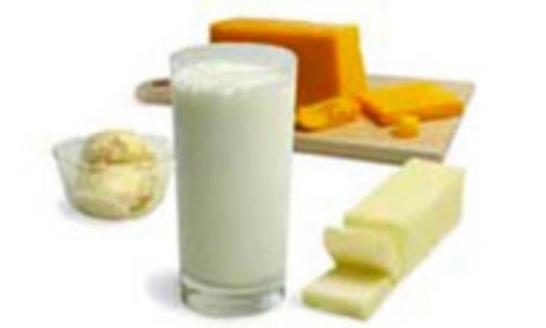 شیر و لبنیات در برنامه غذایی